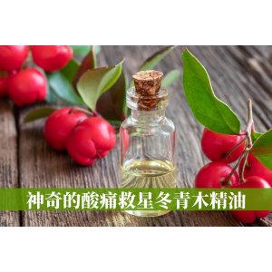 冬青木精油Wintergreen