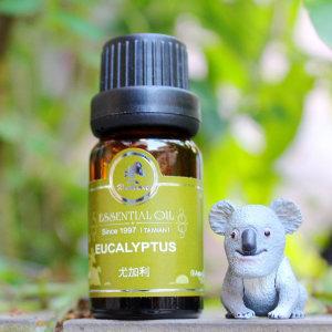 尤加利精油Eucalyptus