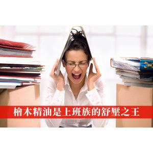 工作壓力山大怎麼辦?韓國研究發現這款精油舒緩上班族壓力功效超強!