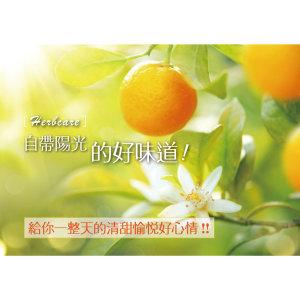 野橘(紅橘)精油Mandarin, red