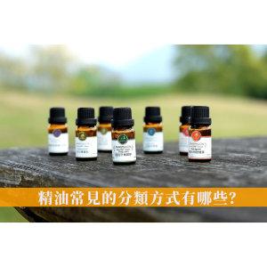 精油常見的分類方式有哪些?教你快速找出最適合的精油