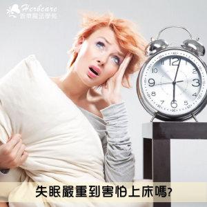 頭痛失眠如何用精油解決?實例問答