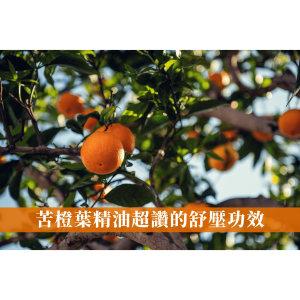 苦橙葉精油Petitgrain